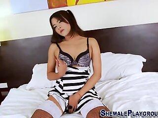 Asiatisk transvestit legetøj hendes røv